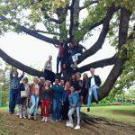 The MLO team_